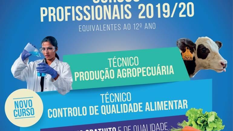 CURSOS PROFISSIONAIS COM EQUIVALÊNCIA AO 12.º ANO