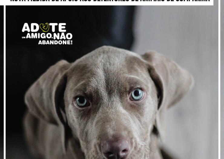 PENAFIEL LANÇA MEDIDA DE APOIO ALIMENTAR PARA CÃES E GATOS DE FAMILIAS CARENCIADAS